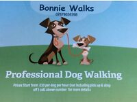 Bonnie Walks