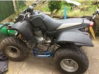 Quadzilla 250E road legal