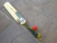 Junior wooden cricket set