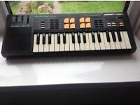 Brill Casio sk5 sampling mini keyboard with voice mic gwo with drum pads 80s