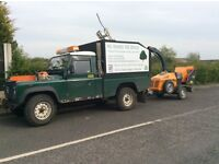 Professional tree & hedge care, prompt attention, free quote, competitive rates