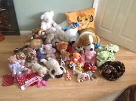 Large selection of teddies