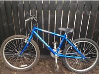 Older child's bicycle. Raleigh urban.
