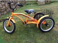 "Disability Child's Trike: MissionTR3Kool 16"" wheels"