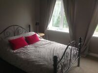 Double room and bathroom to rent in prime location with ample of street parking