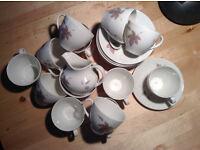 Royal Dalton 'Tumbling Leaves' coffee cup, saucers etc - 26 piece