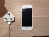 iPhone 5S & charger