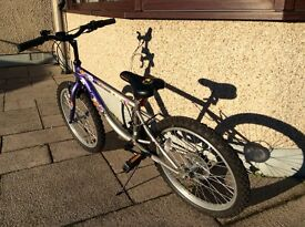 """Girls Bike 20"""" wheels"""