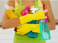 Domestic Cleaning Service!