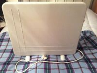 Dimplex freestanding electric radiator