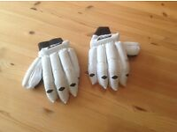 GM youth cricket gloves