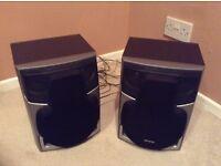 Large aiwa speakers