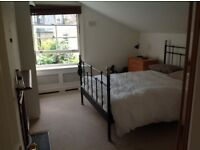 Spacious double room and own bathroom in Putney - opposite Wandsworth Park
