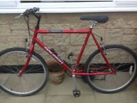 Men's Raleigh Bicycle