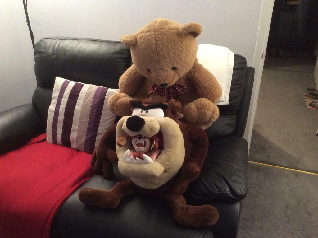 Taz and Ted