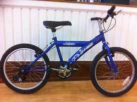 "Boys Mountainbike - fully refurbished 20"" Concept Puma - 6-speed. Suitable for 7-10 yrs"