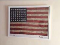 Framed Jasper Johns American Flag