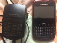 Blackberry curve and charger