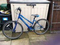 For sale female bike