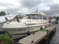 BOAT BIRCHWOOD 31 COMMADORE