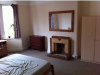 Very large double room to rent in Wilton St, near city centre - £290pm incl wifi - Available 1st Nov