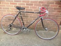Vintage Rudi Altig Road Bike 10 sp