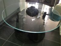 Cat glass coffee table very unusual
