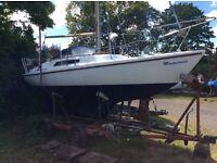 Magnifque Midget Sailing Boat