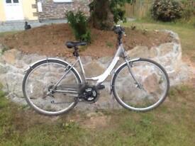Apollo Etienne bike