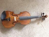 Stentor Student II 4/4 violin