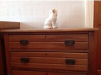 Stripped 'antique' look chest of drawers.