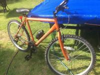 Bike 21 speed with gripshift gears
