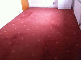 bedroom carpet 16'4 x 8'8 good condition