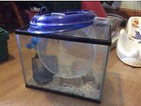 Small fish tank and bowl set