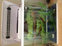 90 litr glass aquarium