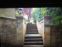 Stonework services, lime mortar pointing,stone garden walls,and stone steps.