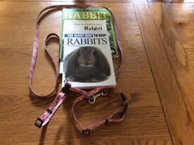 Rabbit harness and books