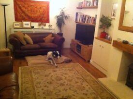 Laura Ashley pure wool carpet rug