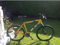 Mongoose Pro Lex Rockadile Mountain bike.