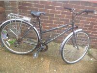 Vintage Ladies Raleigh Pioneer Classic Town Bike 18 sp