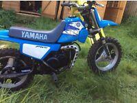 Yamaha genuine pw50