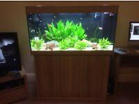 Juwel Rio 300 Aquarium (New Style)