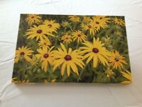 'Golden Rudbeckja' Box Canvas 27cm x 43cm Print