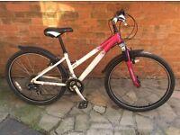 Raleigh ladies bike