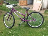 New Ladies bike