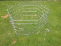 Open air enclosure or run for a puppy or small animals (rabbits, Guinea pigs) on grass.