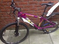 Adults mountain bike 26 inch disc wheels good condition