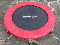 LeisureWise mini-trampoline/trampette.