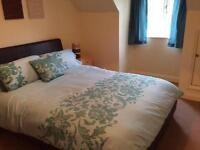 Bedroom to rent professional person