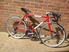 Retro Style Viking 14 Speed Road Bike